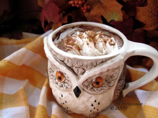 Hot Chocolate Recipe David Lebovitz