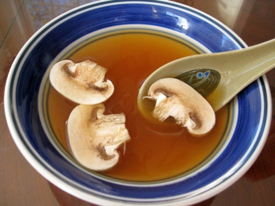 Tsr Version Of Benihana Japanese Onion Soup By Todd Wilbur Recipe