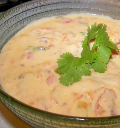 South american cheese sauce recipe genius kitchen forumfinder Images