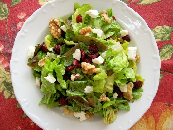 Goat Cheese Cakes Salad